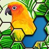 Puzzles Hexagonaux - Puzzle Adulte Gratuit, puzzles pour kindle en français (Jigsaw Puzzles Hexa)