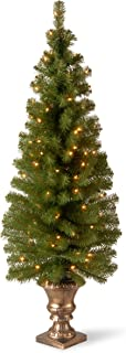 National Tree Company Pre-lit Artificial Christmas Tree For Entrances | Includes..