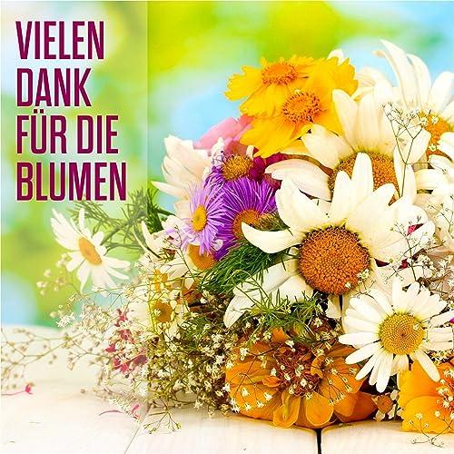 Vielen Dank Für Die Blumen Karaoke Version By Vielen Dank