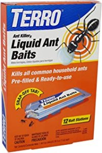 Best Ant Killer Outdoor of January 2021