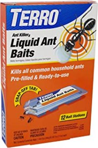 Best Ant Killer Outdoor of March 2021