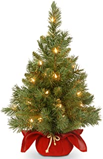 National Tree Company Pre-lit Artificial Mini Christmas Tree   Includes Small Lights and..