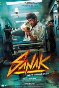 Sanak (2021) WEB-DL [Hindi DD5.1] 1080p 720p & 480p x264 HD