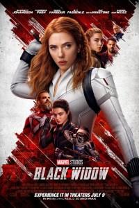 Black Widow (2021) WEB-DL Dual Audio [Hindi DD5.1 & English] 1080p / 720p / 480p x264
