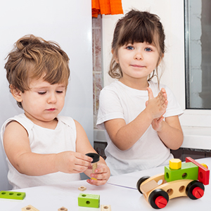 Wooden Toy Kit,Encourage Imaginative Play