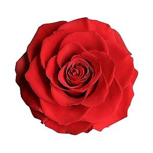 Preserved Rose, Real Rose, Red Rose, Preserved Flowers,preserved roses, preserved roses in a box