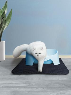 Kitten Cat litter mat