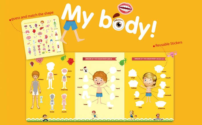 Educational & Learning ----- Encyclopedia of the human body