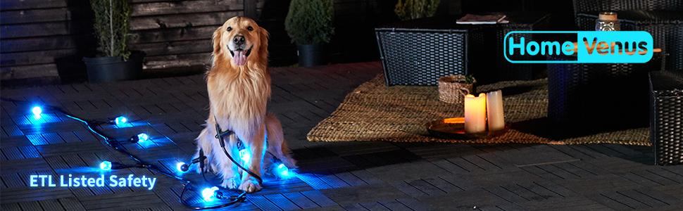 waterproof outdoor string lights