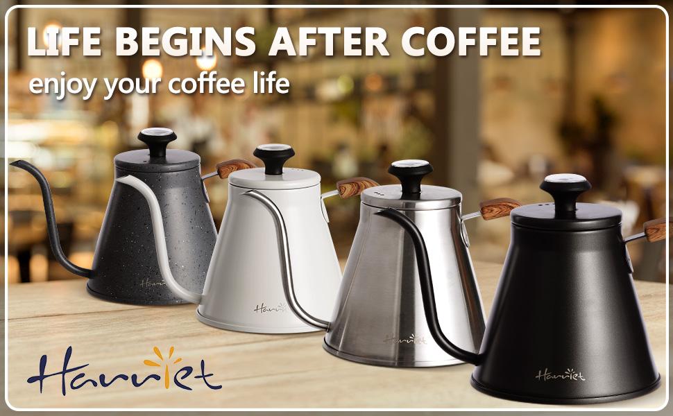 Harriet gooseneck pour over coffee kettle