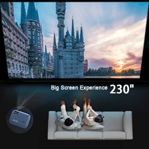 Outdoor Movie Projector
