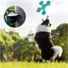dog toys for large dogs