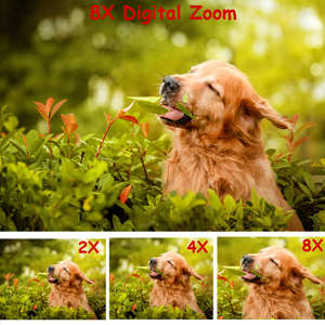 8x digital zoom