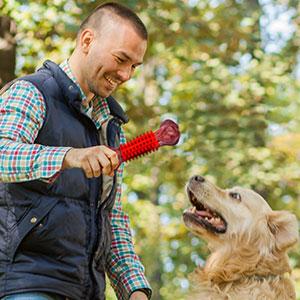 dog toys large dog