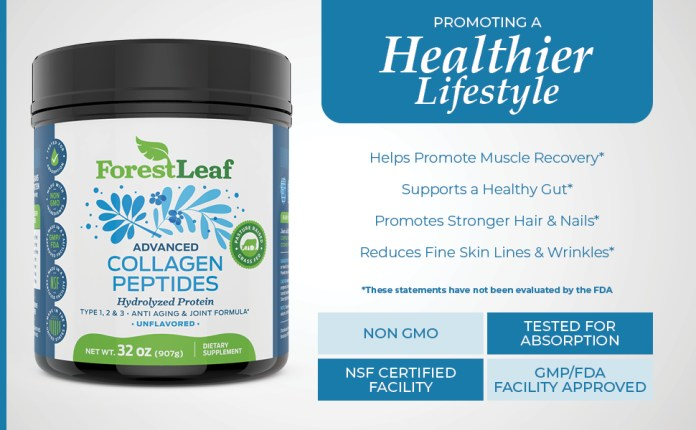Collagen Peptides hair skin nails supplement beauty vitamin healthy gut no wrinkles