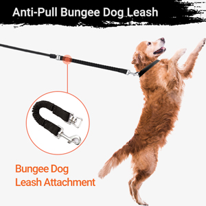 Bungee Dog Leash Attachment (Shock Absorber)