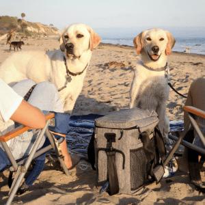 Lucky Tail Dog Travel Bag Beach