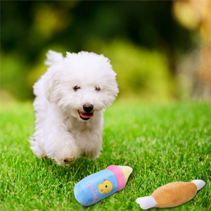 small dog toys squeaky