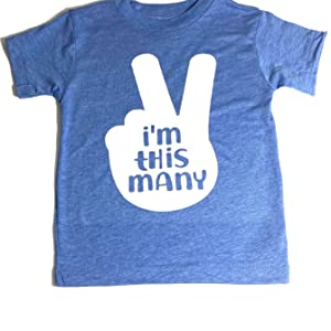Toddler 2T Birthday Short Sleeve T-Shirt