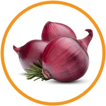 Red Onion Oil - Onion Extracts