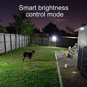 smart brightness
