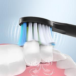diş fırçası