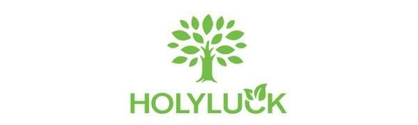 holyluck