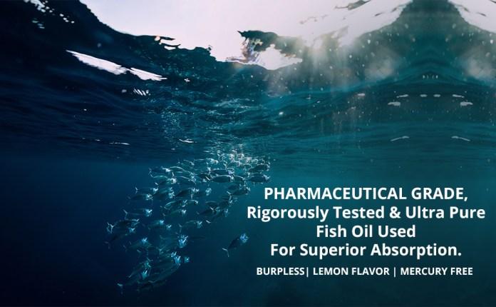 Fish oil omega 3 capsule 1000mg