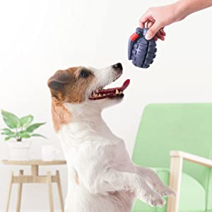 Dog Chew Toys for puppy
