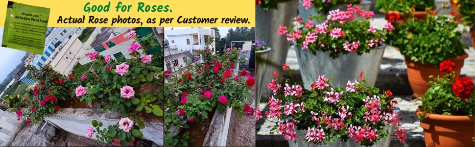 Fertilizer, Fertiliser, Plant Food, All in one plant food, plant fertiliser, garden, plants, compost