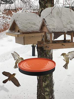 heated birdbath for outdoor