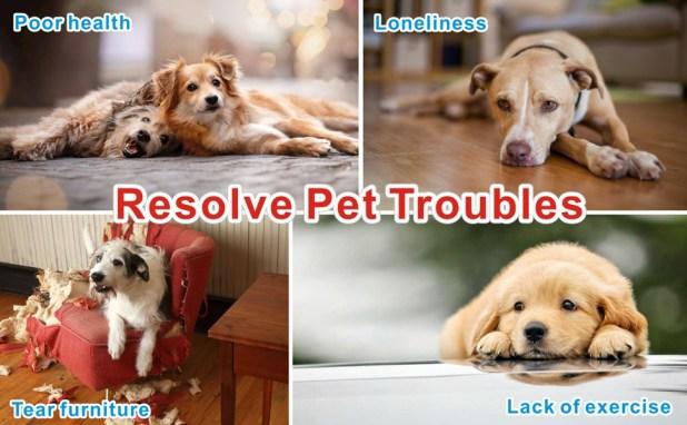 Resolve Pets Troubles