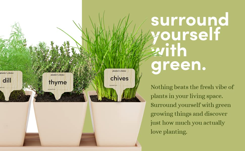 surround yourself with green