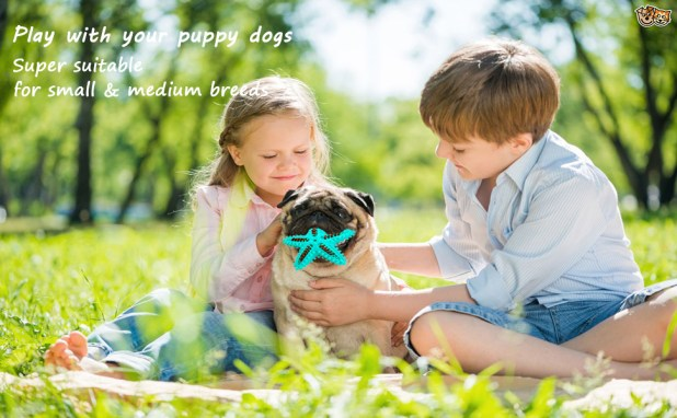 Puppy Dog Chew Toys for Aggressive Chewers small breeds