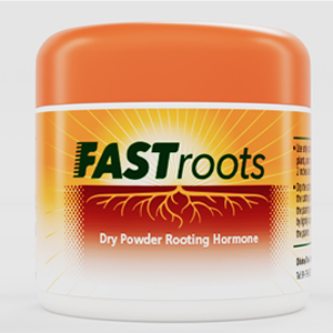 fast root front image