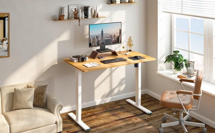 Amazon.com: Flexispot Standing Desk Height Adjustable Desk Electric Sit Stand  Desk 48 x 24 Inches Home Office Desks (White Frame + Maple Top): Furniture  & Decor