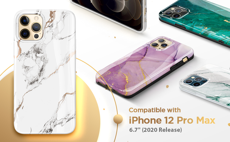 Case for iPhone 12 Pro Max 6.7 Inch