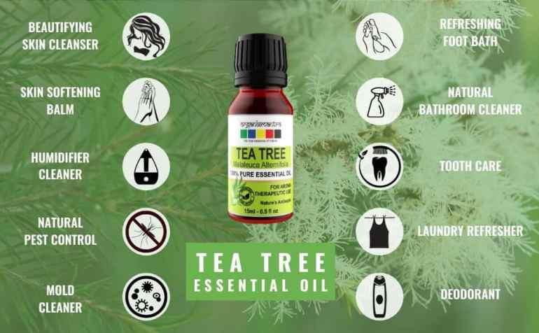 essential oils uses, tea tree oil, tea tree oil for hair, tea tree essential oil for skin