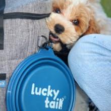 Lucky tail dog travel bag pet bowls