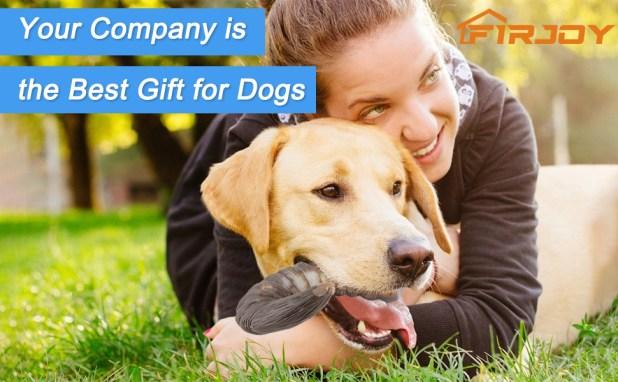 dog chew gtoy