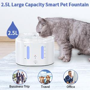 2.5L cat founatin