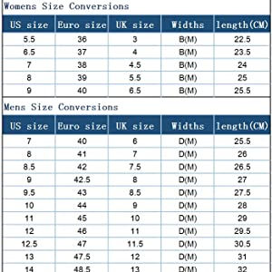 Soulsfeng Shoes Size Chart