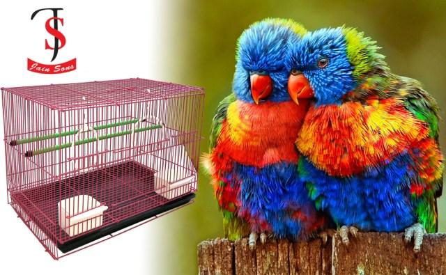 Jainsons Bird cage