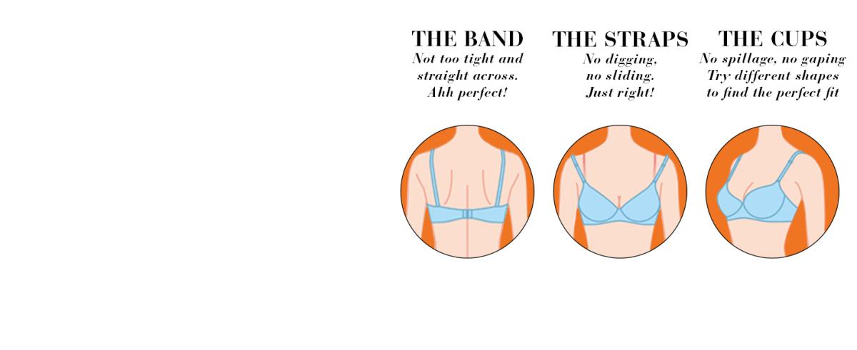 warner's this is not a bra, 1593, underwire bras, best t-shirt bra, bra fit guide