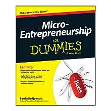 micro-entrepreneurship, micro-enterpreneurship for dummies, micro-entrepreneurship book