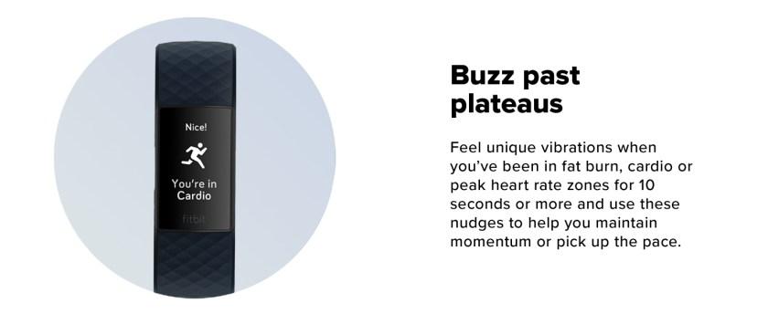 buzz past plateaus