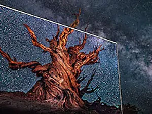 "Samsung 65"" Q90R QLED Flat Smart 4K TV - QLED with a tree against a starry night sky"