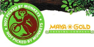 monckey