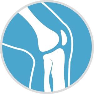 kayos bone support supplements