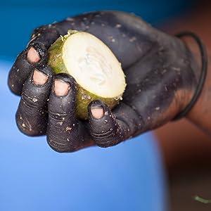 Mastes hand jagua fruit
